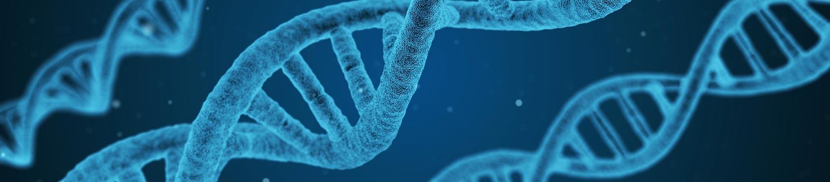 Corso di Biochimica - Scuola di Naturopatia