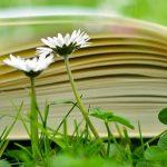 Legislazione, deontologia, etica professionale del Naturopata
